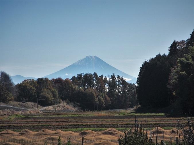 7 19.11.18-19 八ヶ岳スケッチハイク ➁キャノン (172)