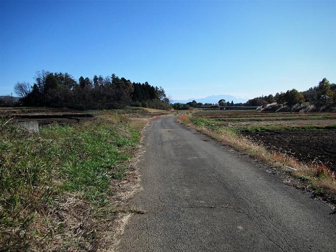 6 19.11.18-19 八ヶ岳スケッチハイク ➁キャノン (229)