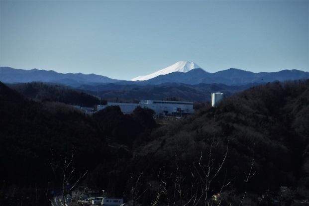 20.1.9 天覧山・吾妻渓谷(峡) (84)