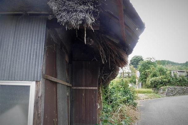 19.9.24 官の倉山~石尊山 (201)