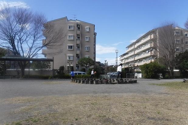 20.3.4 孫3人の公園、映画折り鶴七変化 (37)