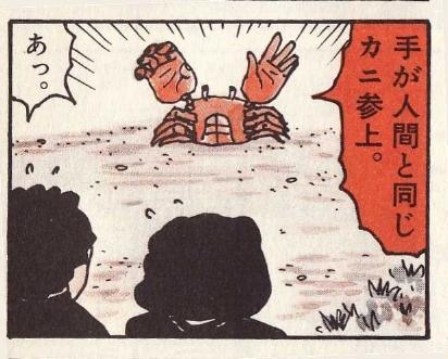 手が人間と同じカニ参上(詳細不明)