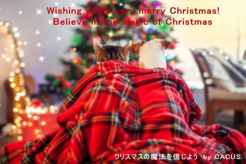 2019christmas_convert_20191224231041.jpg