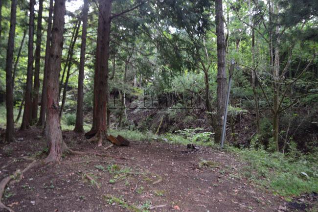 何がなんでもキャンプだし https://campdaisuki.blog.fc2.com/ 戸沢川 せせらぎ荘キャンプ場 林間サイト