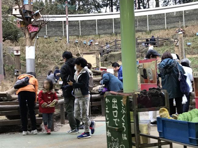 何がなんでもキャンプだし 町田リス園 障がい者自立支援法 就労支援B型施設 特定非営利活動法人 タイワンリス シマリス 駐車場 エサやり 動物が好き 子連れ