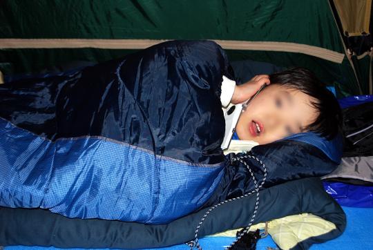 何がなんでもキャンプだし トイプードル ココア トリミング 別の生き物 モコモコ 毛玉 2ミリ バリカン