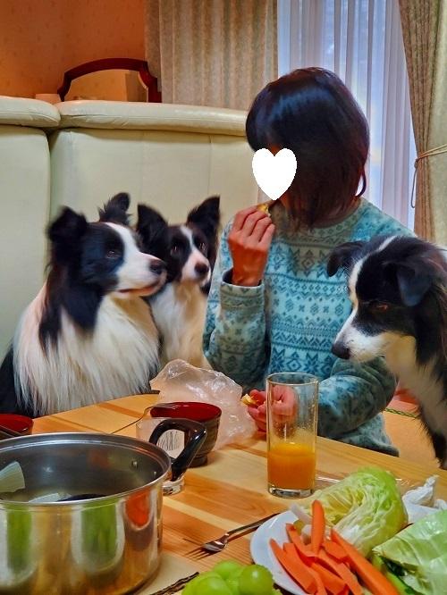 s-軽井沢の旅 201911 raimu_191201_0087