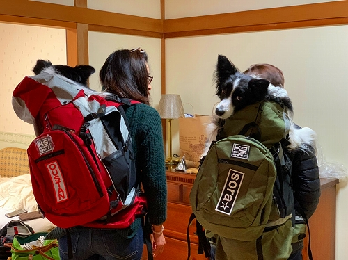 s-20191123_24 軽井沢旅sora家_191201_0043