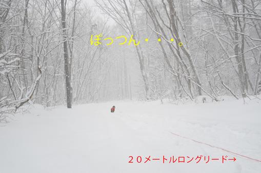 20200225 (14)