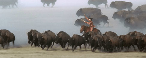 Dances with Wolves_Buffalo scene