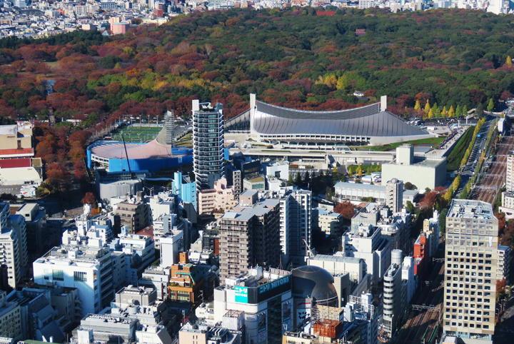 渋谷-523