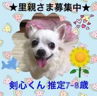 fc2blog_20200111090604c3c.jpg