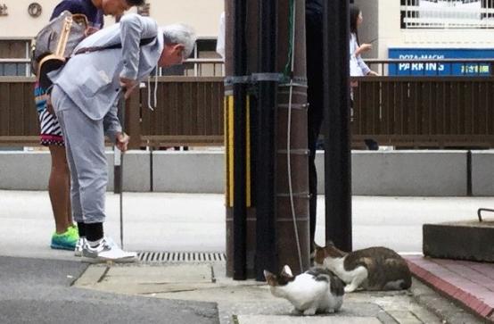 子猫の鳴き声がする側溝を心配そうに見つめる通行人と猫=長崎市新地町で2019年10月1日午前8時36分