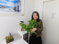 新鮮朝摘み菜の花、いい香り~♪(20200305)