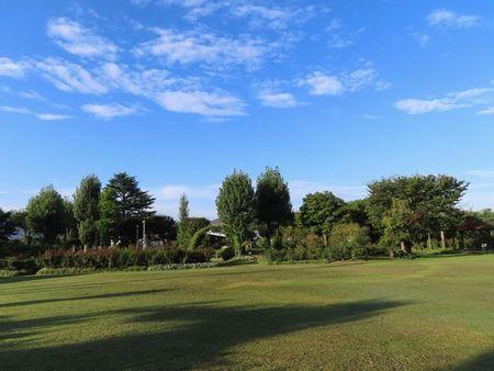 004バラ公園