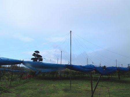 006台風通過