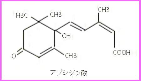 キトロロギストXの記録 カンキツ栽培と植物ホルモンのアブシジン酸