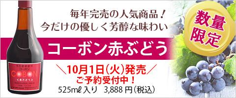 sbnr04_2019_yoyaku.jpg