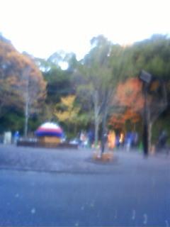 3月東山植物園ライトアップ