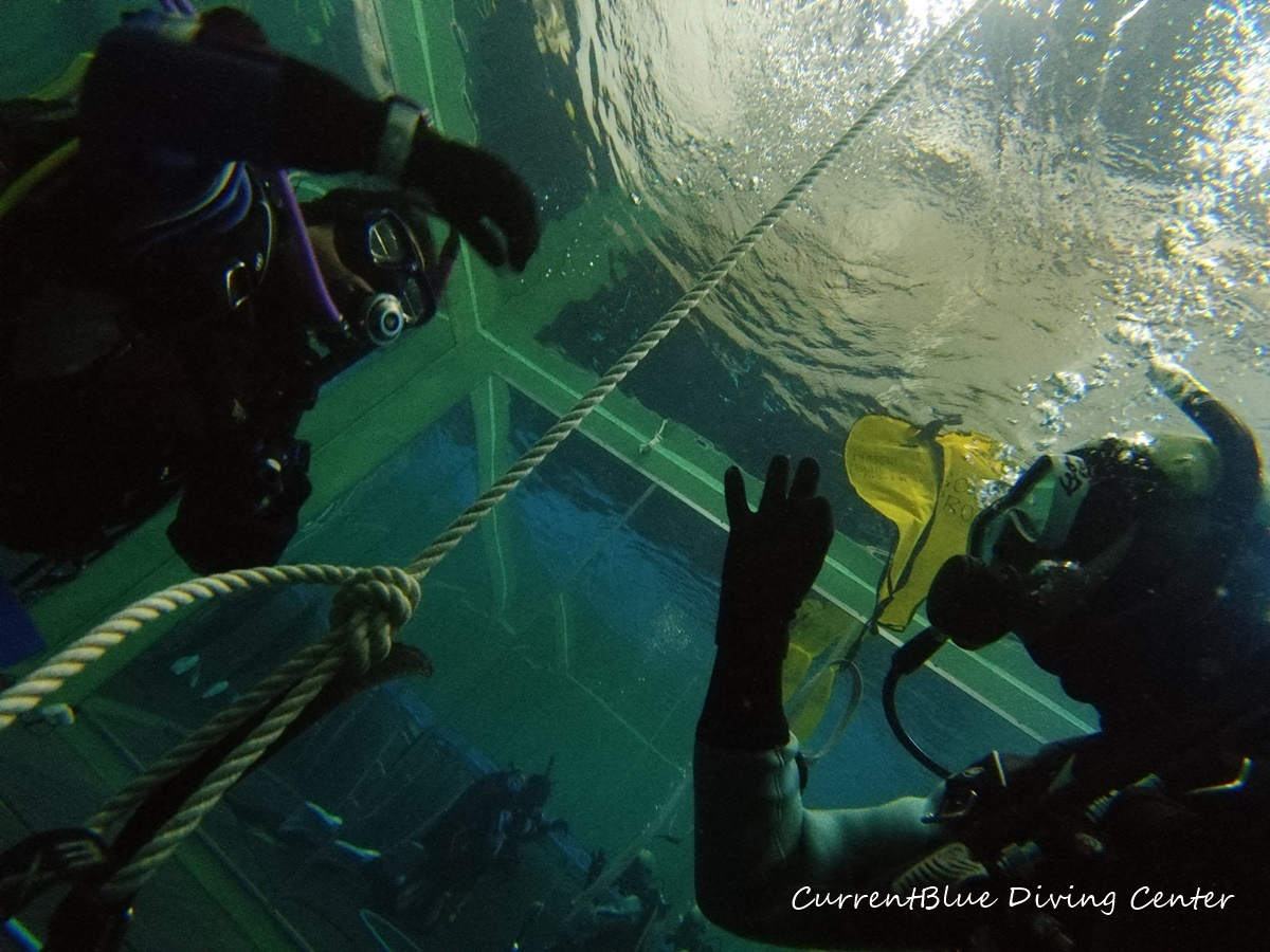 ダイビングインストラターコース,ダイビングプール (2)