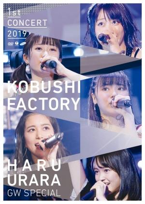 こぶしファクトリー ファーストコンサート2019 春麗 〜GWスペシャル〜dvd