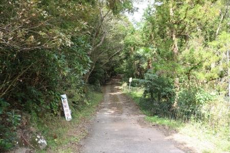 登山道(2)
