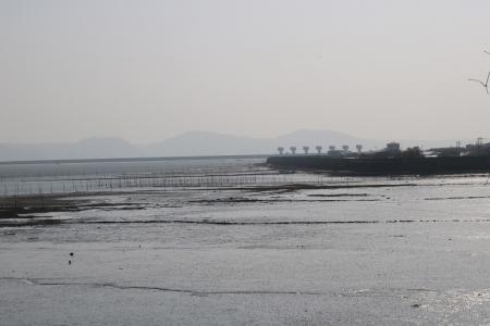 有明海(2)