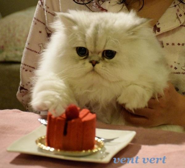 誕生日かな?1
