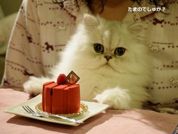 誕生日かな?2