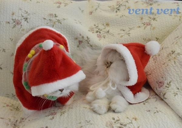 メリークリスマス3