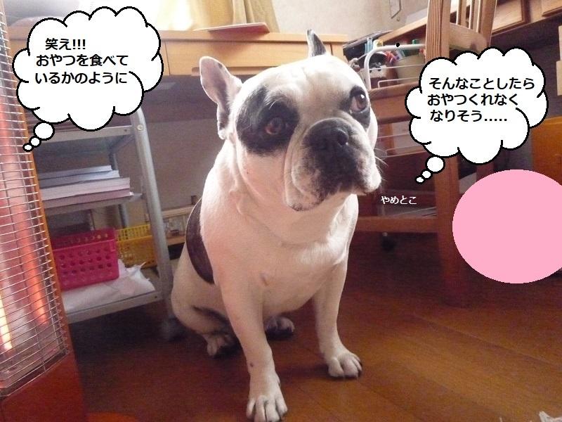にこら201011to201108 2280