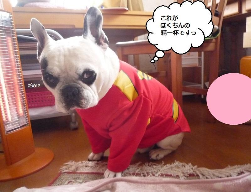 にこら201011to201108 2274
