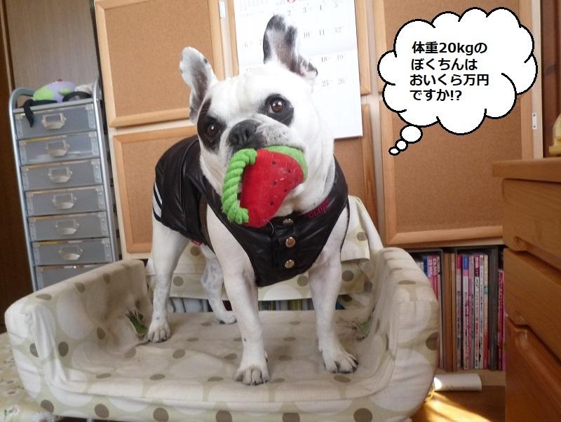 にこら201011to201108 2804