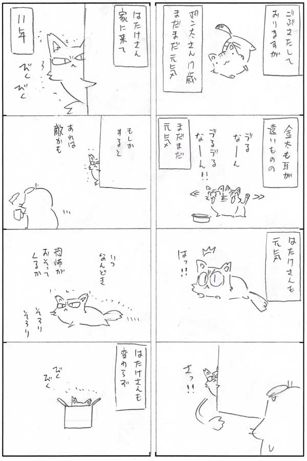 IMG_095.jpg