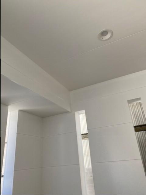 外壁,塗装,白,ダウンライト,照明,白い家