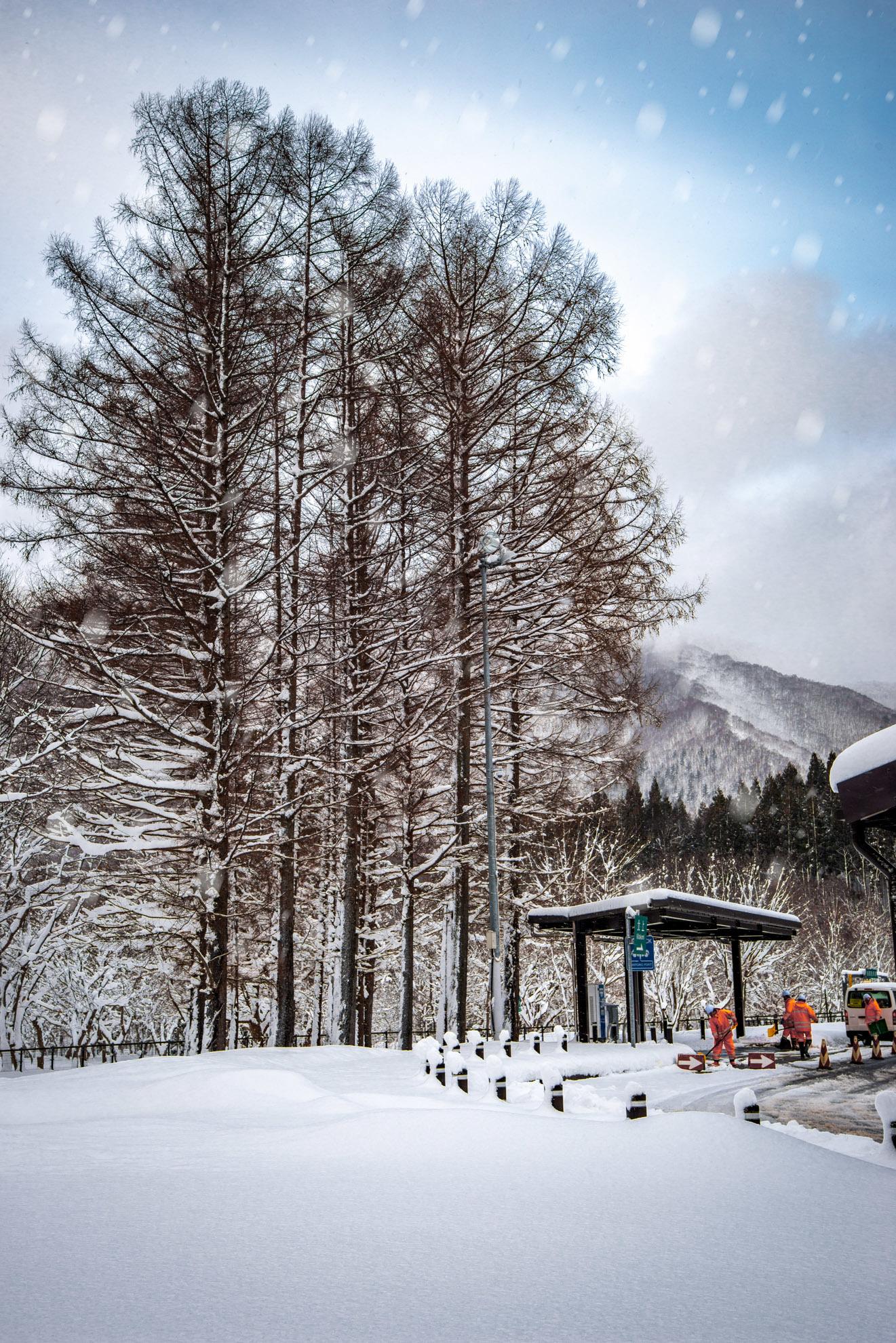 雪景色‗02