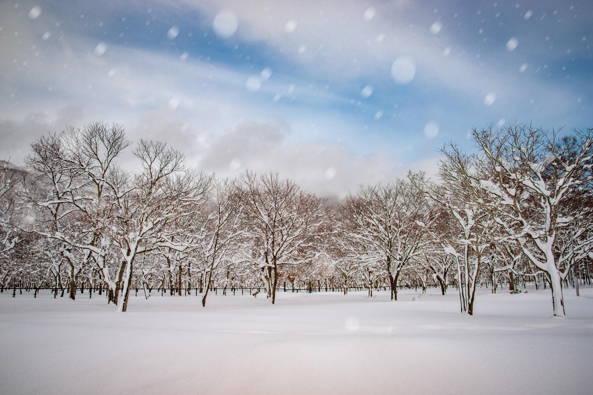 雪景色‗01