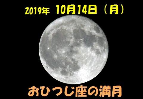 1-_DSC3311.jpg