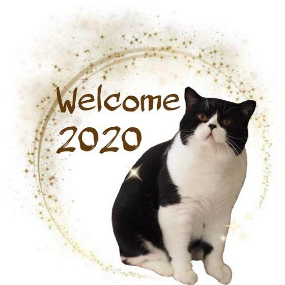 2020_202001081336405b6.jpg