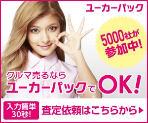 B_5000社_300_250-2