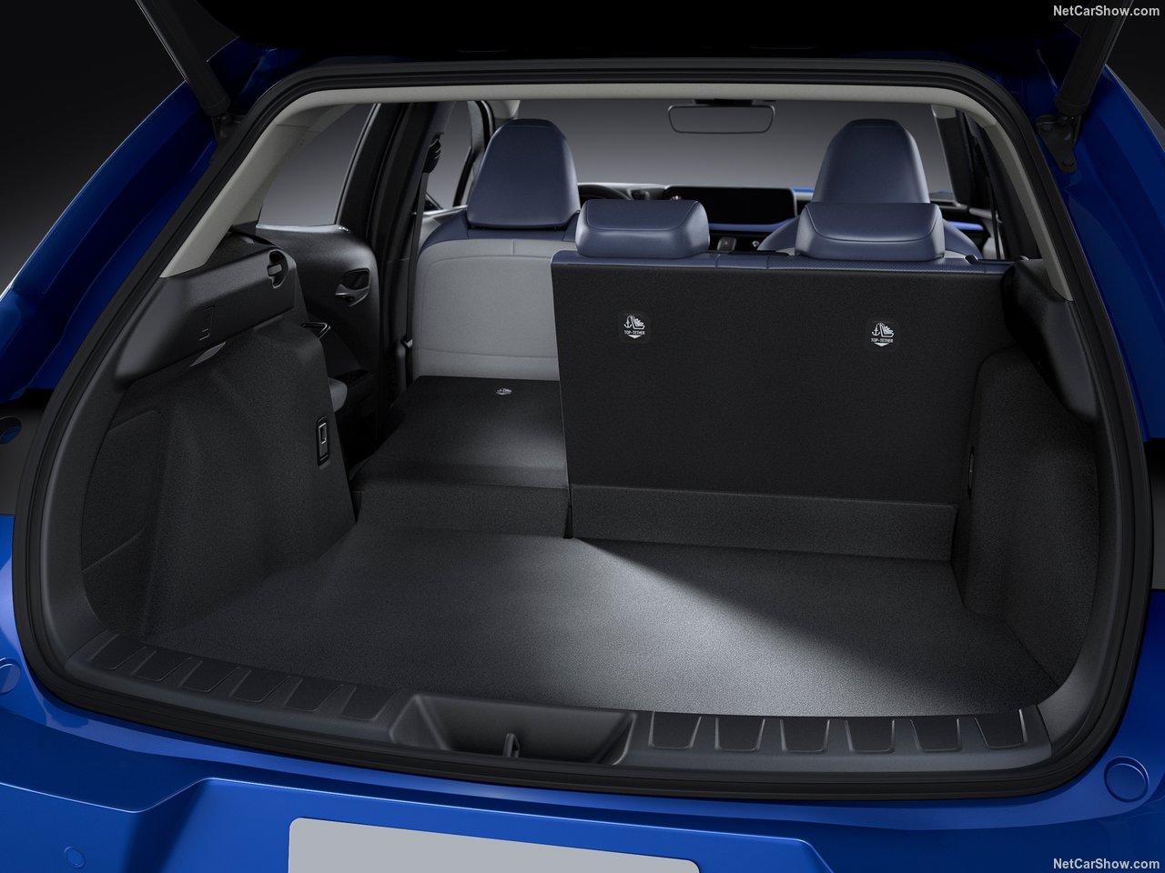Lexus-UX_300e-2021-1280-19.jpg