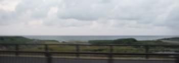 ようやく見えた海