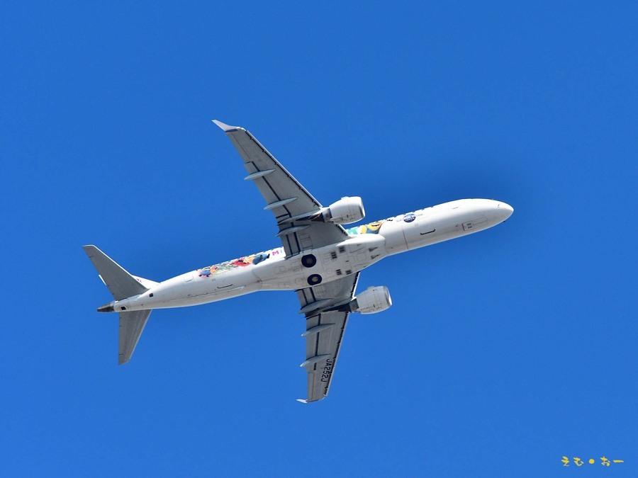 JAL-3b*