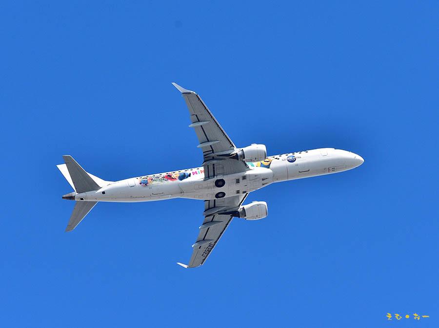 JAL-2b.jpg
