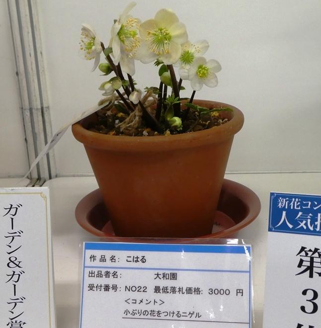 kuriten20_con_20.jpg