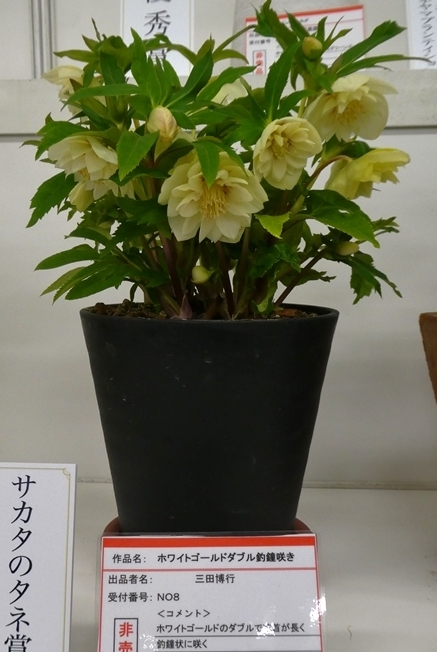 kuriten20_con_27.jpg