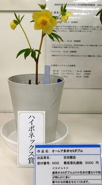 kuriten20_con_29.jpg