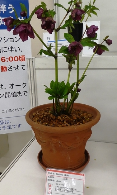kuriten20_con_38.jpg