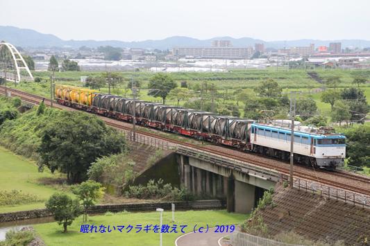 20190901 (385)のコピーa