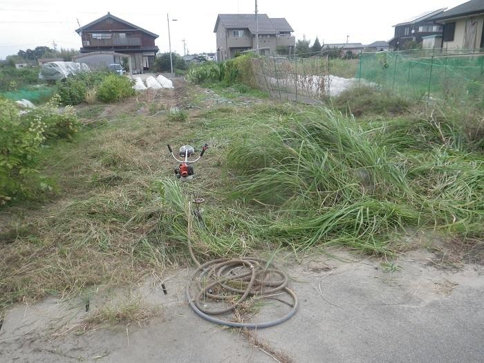 草刈り6_19_09_28